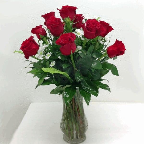 12 premium red roses margaret sticklen gift shop for 12 dozen roses at your door